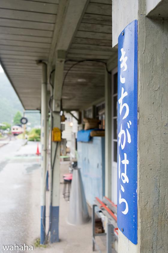 280612katakami-2-8.jpg