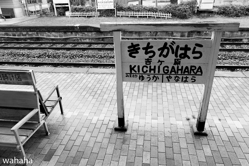 280612katakami-3-04.jpg