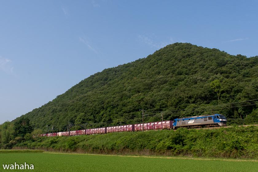 280618kamigori-4-2c.jpg