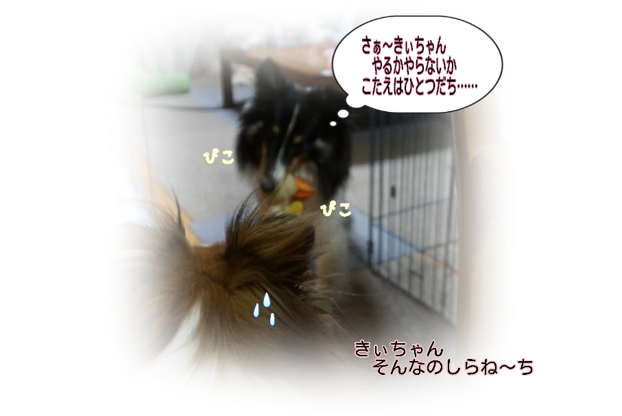 16-04-15-05-52-57-359_deco.jpg