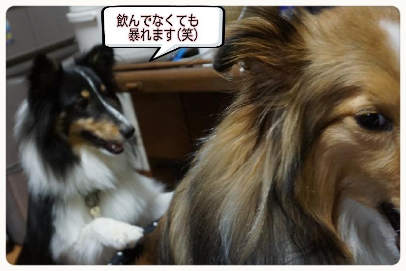 16-04-15-09-39-16-069_deco.jpg