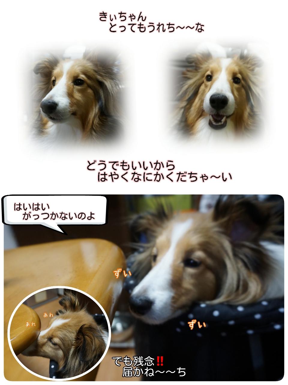 16-04-15-09-55-45-348_deco.jpg