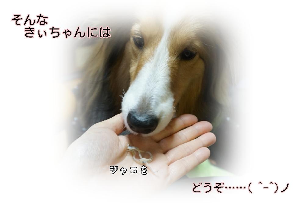 16-04-15-14-38-33-458_deco.jpg