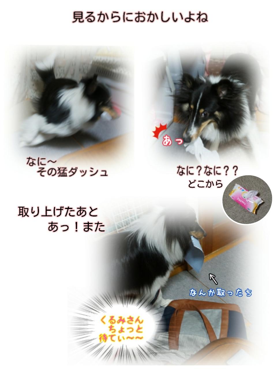 16-04-15-15-09-19-816_deco.jpg