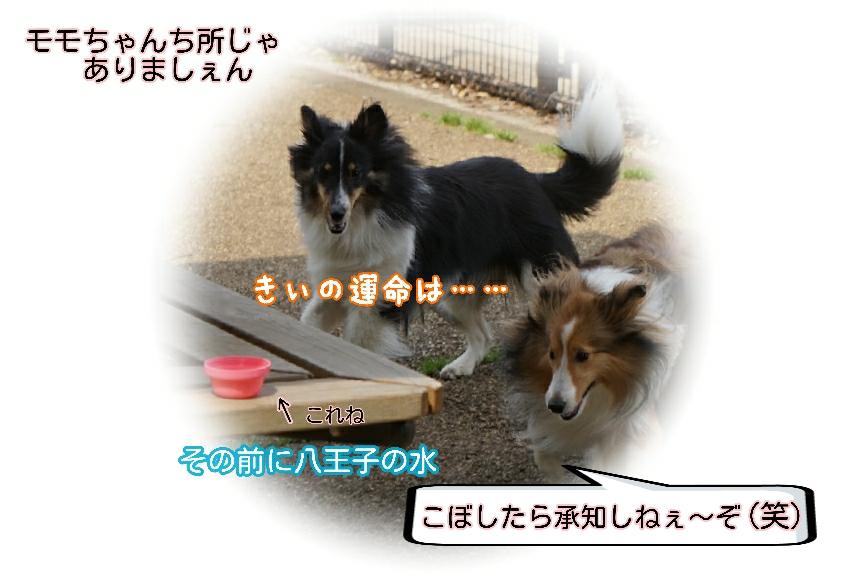 16-04-16-19-15-14-777_deco.jpg