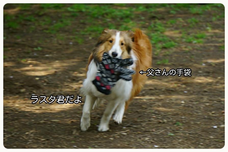 16-04-16-19-27-53-002_deco.jpg