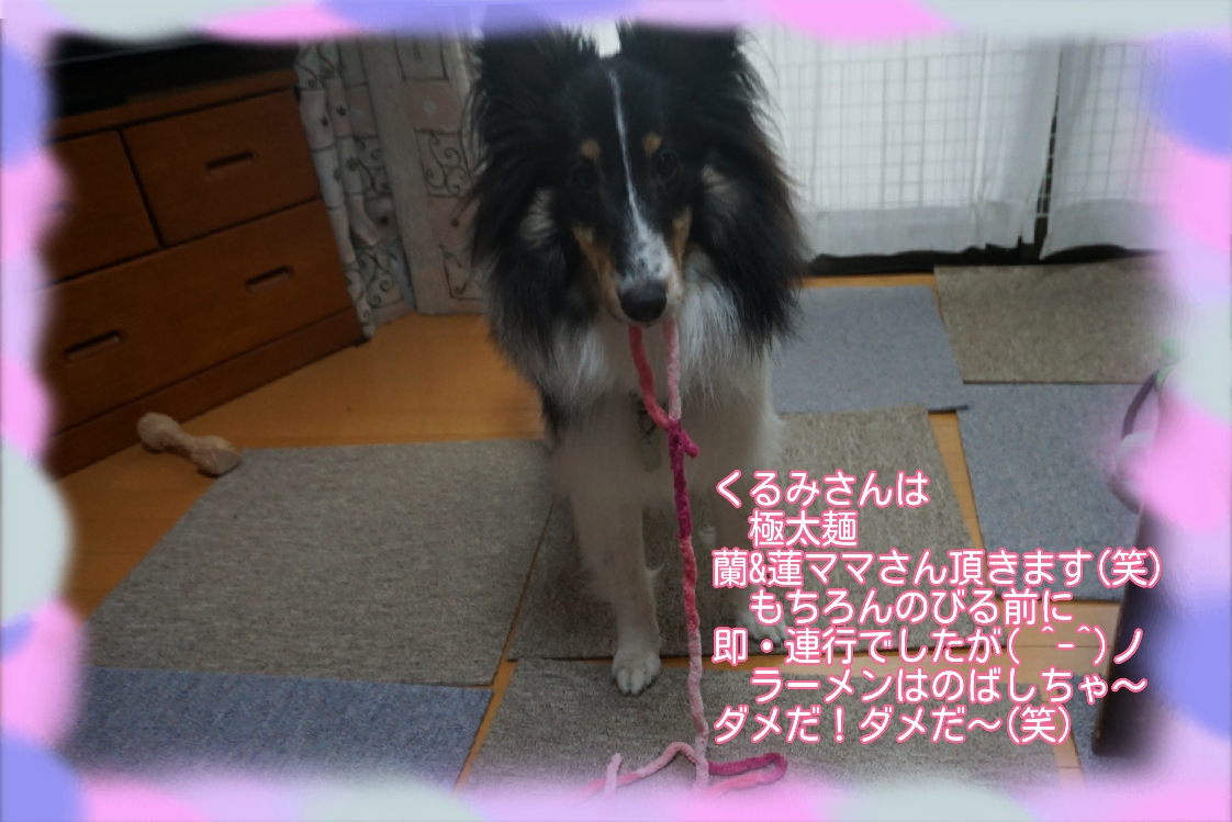 16-04-23-17-49-58-463_deco.jpg