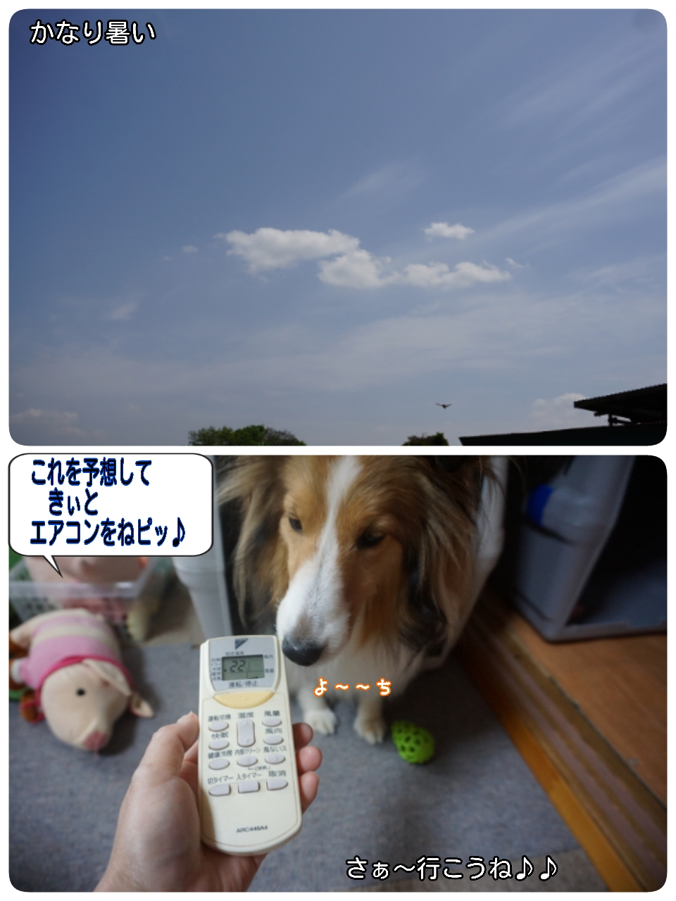 16-04-25-13-55-16-214_deco.jpg