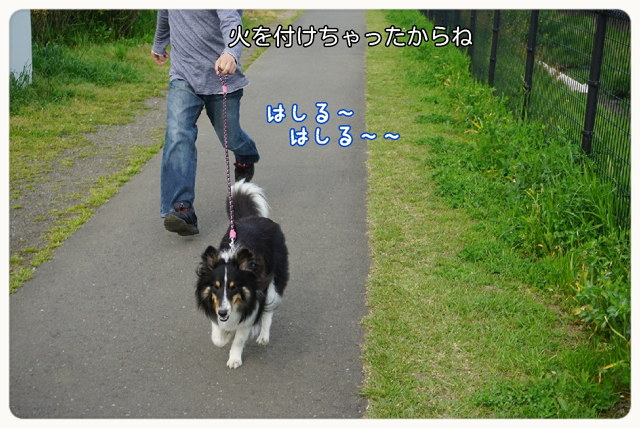 16-05-03-05-19-07-103_deco.jpg