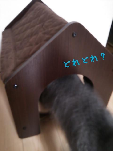 16-05-20-13-09-05-330_deco.jpg