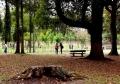 ①奈良公園で見かけた二人