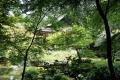 ①南禅院の庭園