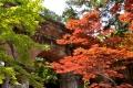 ⑤新緑の南禅寺水路閣