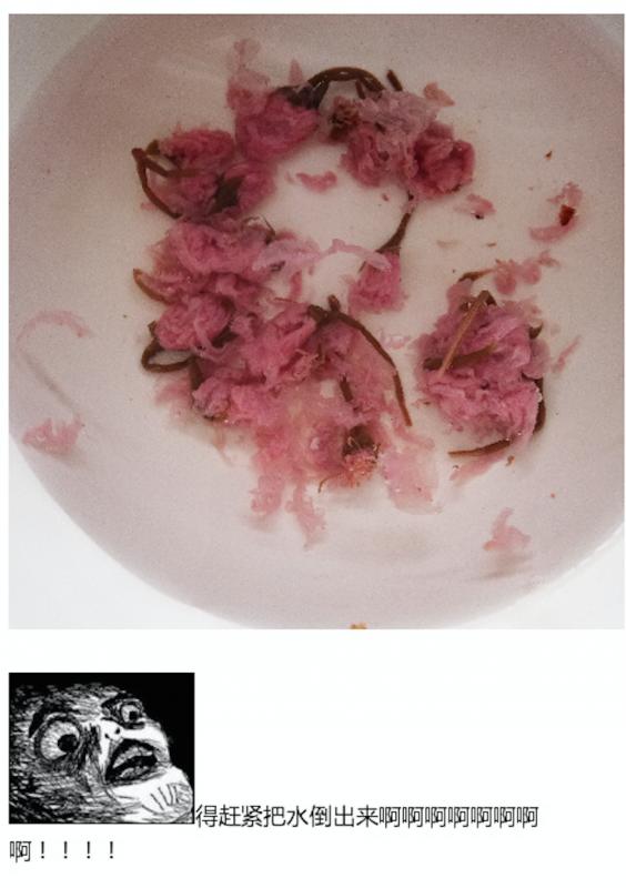 樱花芝士蛋糕22