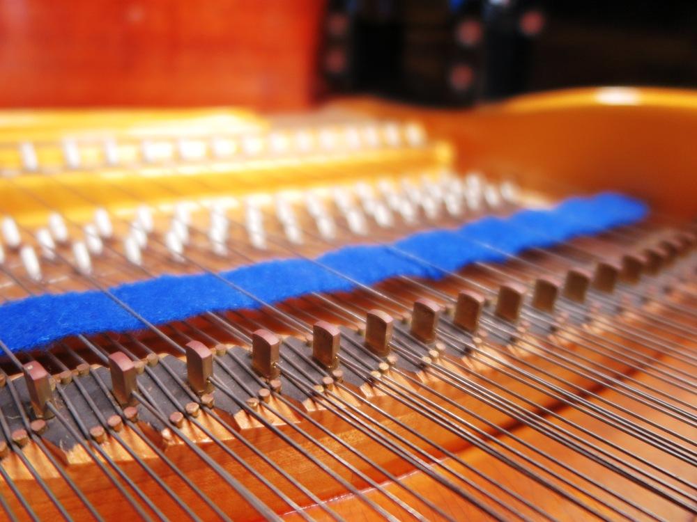 次高音、高音部のアリコート弦