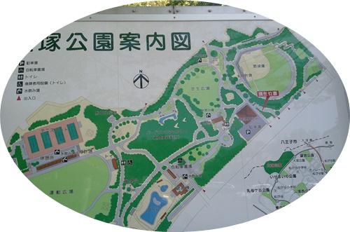 大塚運動公園図