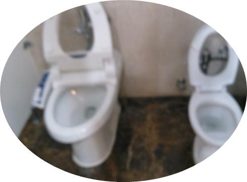 子供用トイレ (1)