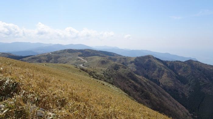 達磨山 (5)