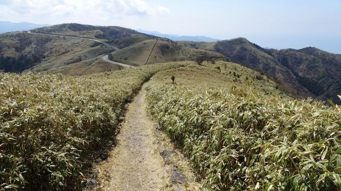 達磨山 (2)