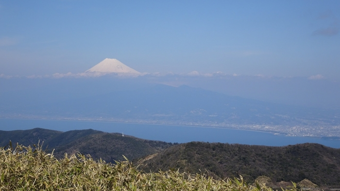 達磨山 (4)