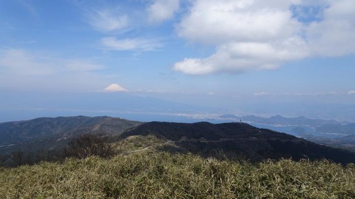 達磨山 (9)