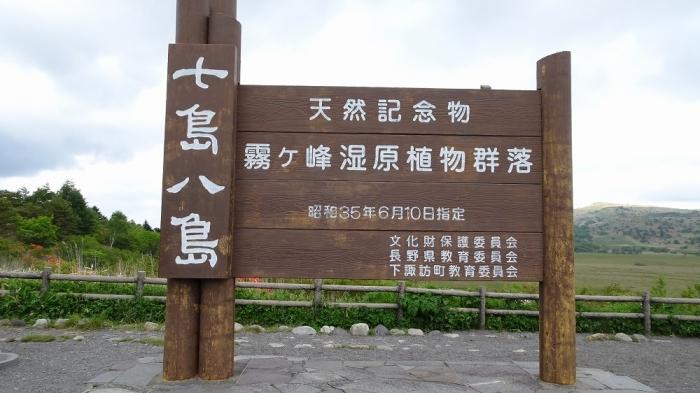 白樺湖と八島湿原 (6)