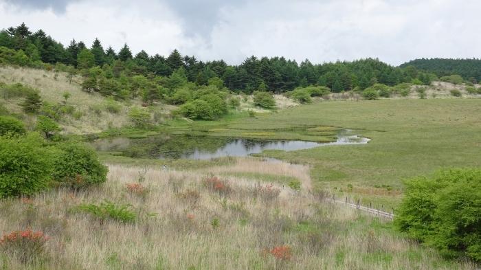 白樺湖と八島湿原 (8)