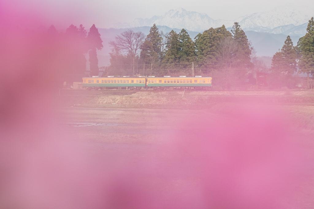 富山地鉄2016_4_1