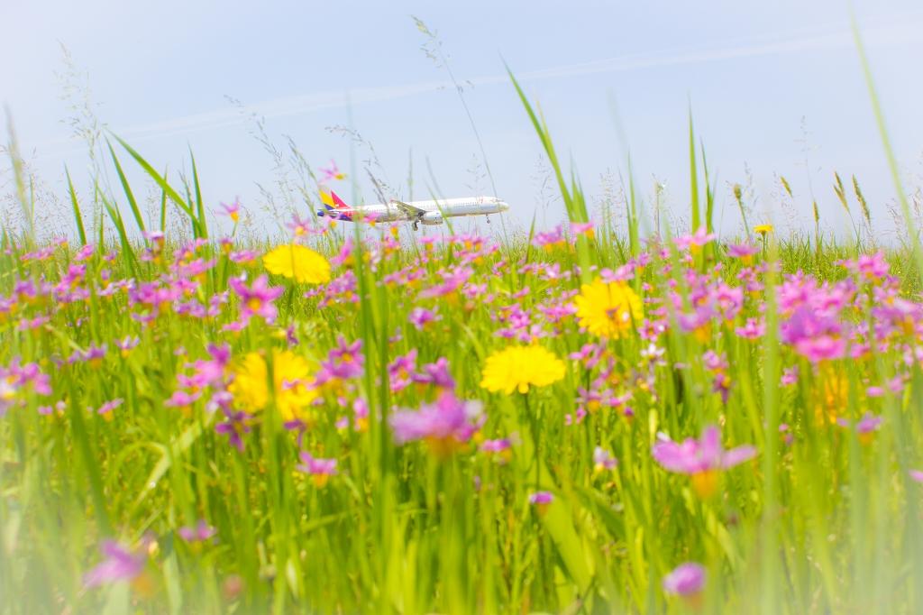 富山空港H28_5_15