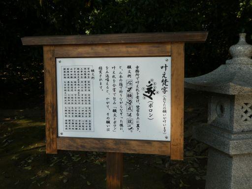 P1600915_512.jpg
