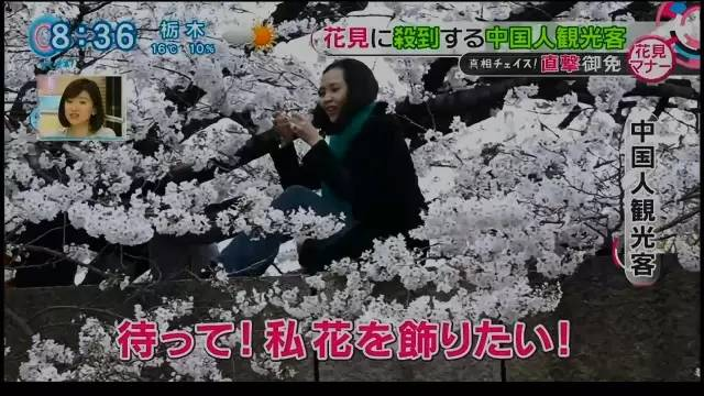 chinese_tourists_make_japan_tv.jpg