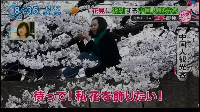 chinese_tourists_make_japan_tv.jpg