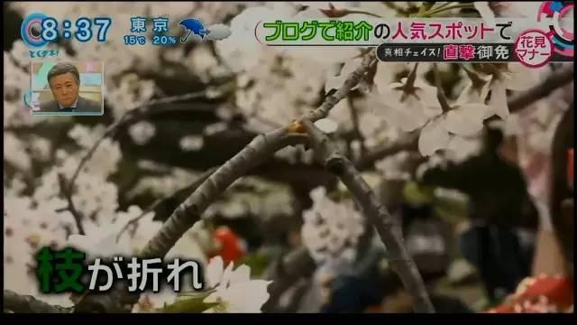 chinese_tourists_make_japan_tv8.jpg