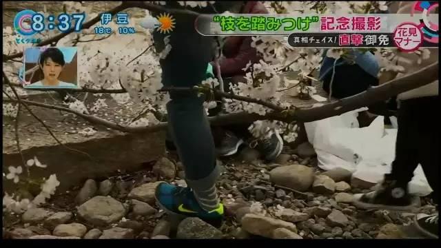 chinese_tourists_make_japan_tv9.jpg