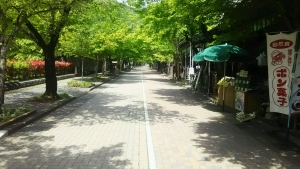 tanigumiyamakegonji_11.jpg