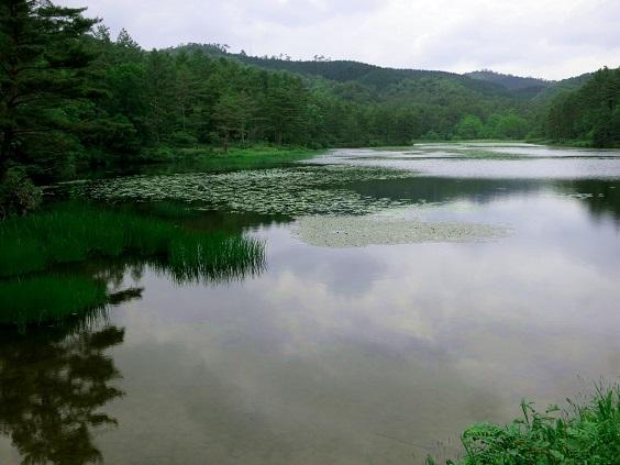 八幡湿原・御射鹿池風