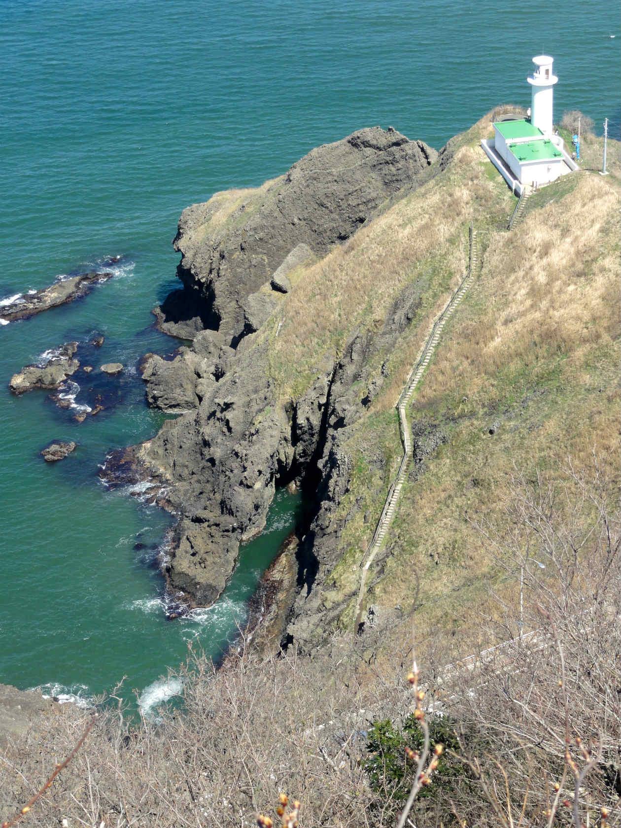 灯台コース登山道から