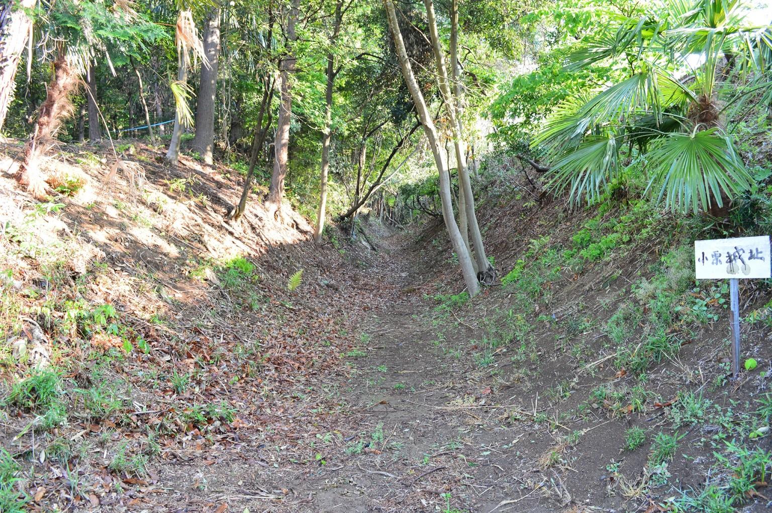 東側に北の小貝川に向かいのびる堀切「境堀」