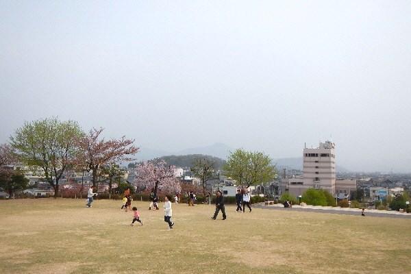 DSCN4226(1).jpg