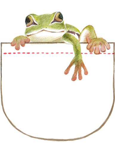 pocketfrog.jpg