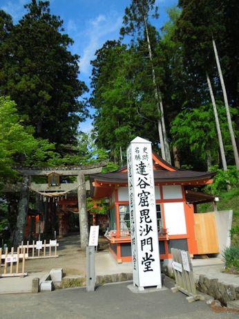 DSCN8826_bisyamon.jpg