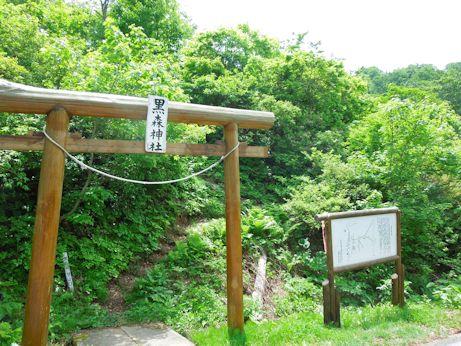 DSCN8890_torii.jpg