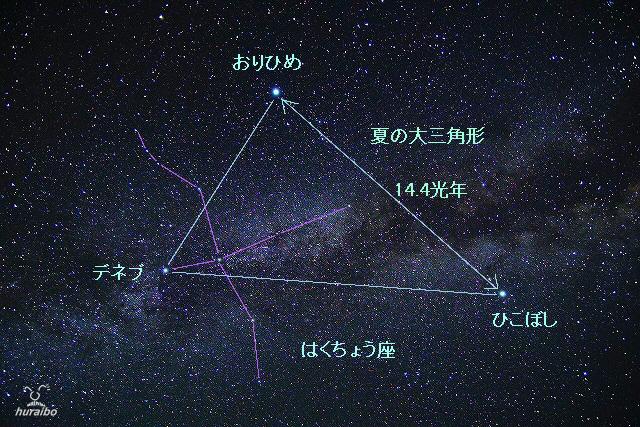 BS-18.jpg