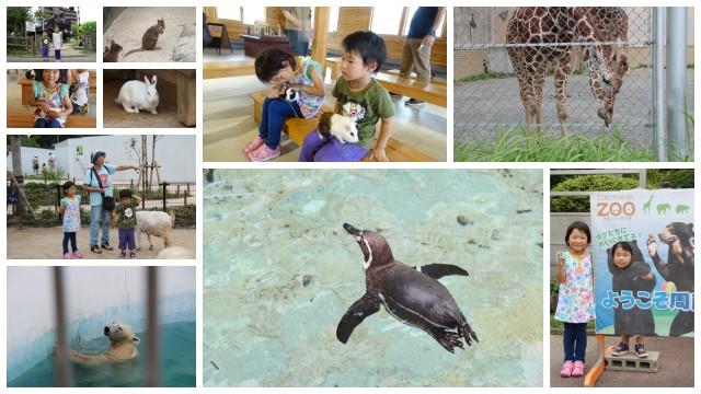 160702動物園