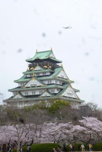 大阪城 西ノ丸庭園 2016 4月5日 (mt.okuho)
