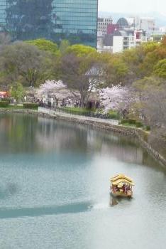 大阪城   2016 4月5日 (mt.okuho)