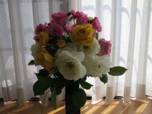 ブログ用+023_convert_20160513133842