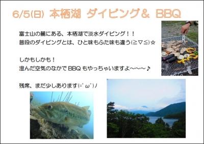 本栖湖ツアー宣伝