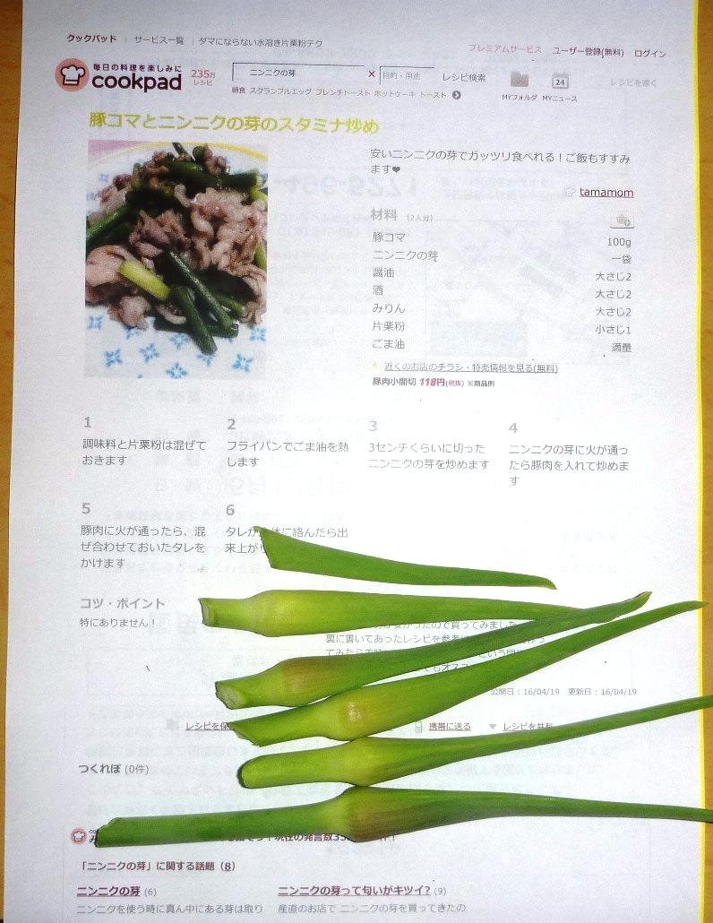 P1050355.jpg