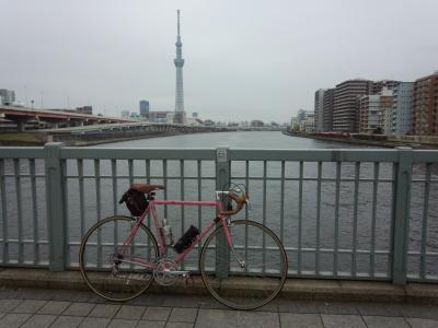 photo_derosa_tokyosakura_18_0402_2016_0402.jpg